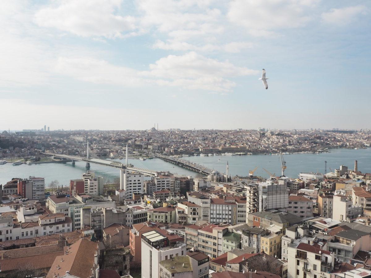 ガラタ塔から見たイスタンブール旧市街