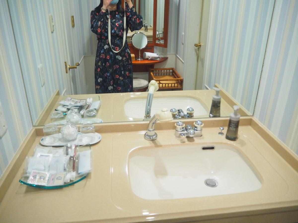 ホテルアムステルダムのスーペリアルームの洗面台