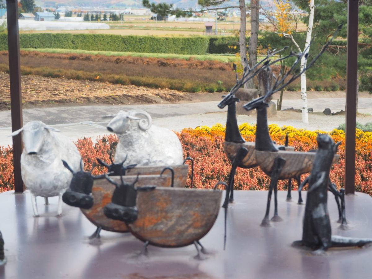 秋のファーム富田の畑2